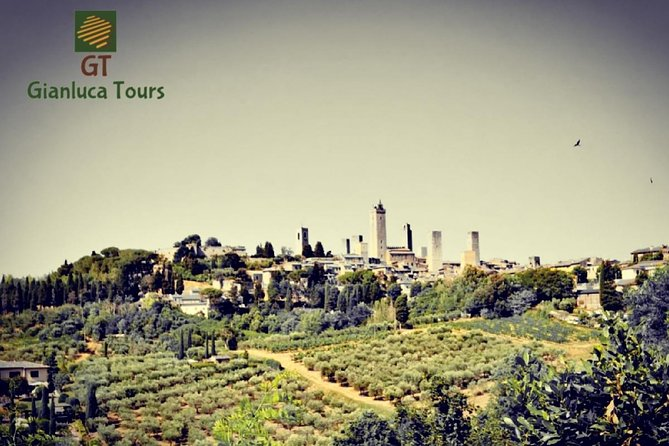 Hire a car with driver Custom Tours Florence Tuscany photo 2