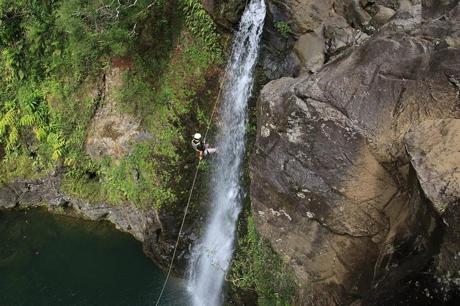 Rappel Maui Waterfalls and Rainforest Cliffs photo 4