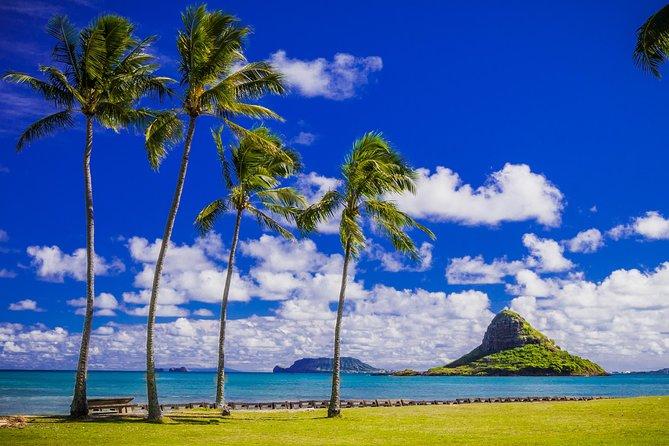 Majestic Circle Island Eco Tour from Waikiki