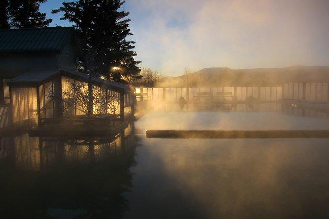 Yukon Wildlife Preserve & Takhini Hot Springs