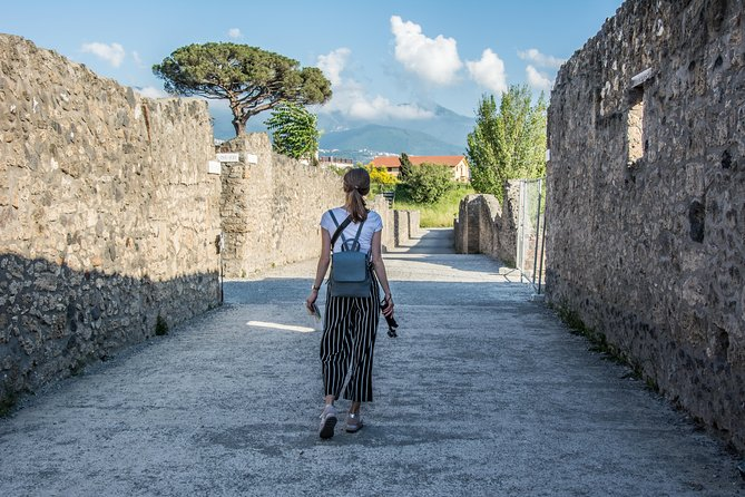 Epic Archaeological Walking Tour of Pompeii