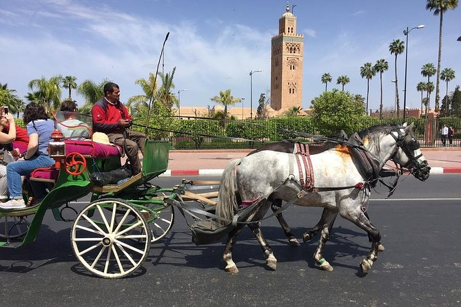 Royal Horse-drawn carriage ride Marrakech photo 3