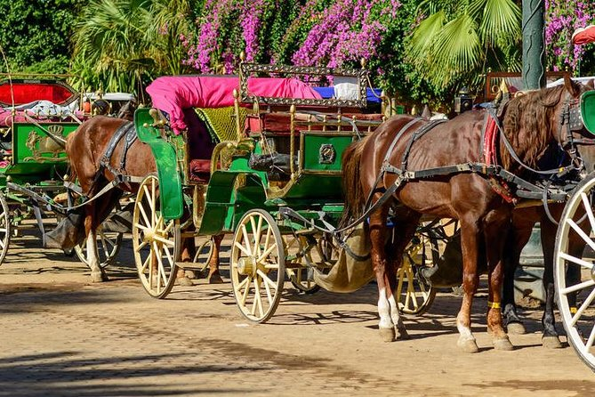 Royal Horse-drawn carriage ride Marrakech photo 4