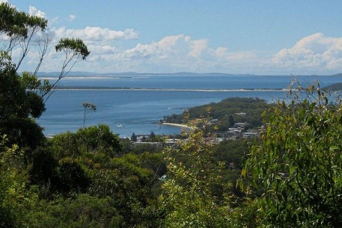 Dolphin Watching Sydney Tours | Port Stephens Private Tour