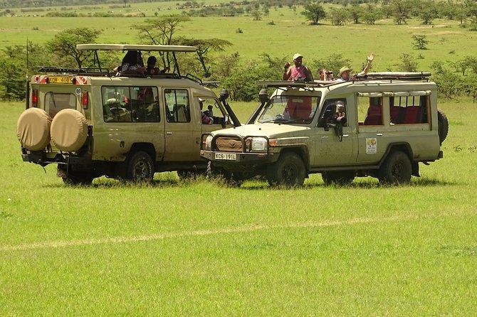 6-Days Gorilla Tracking in Bwindi & Masai Mara
