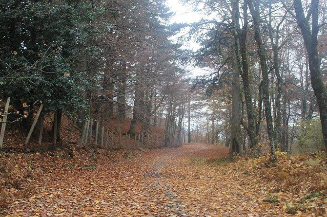 Hiking in Qafshtama National Park from Tirana -1 day