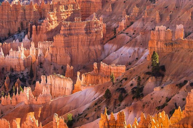 2-Day Tour: Grand Canyon, Zion, Bryce Canyon & Antelope Canyon, Horseshoe Bend photo 3