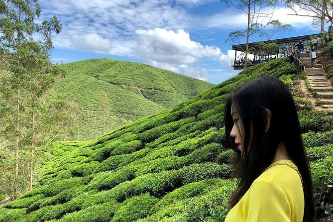Private Full-Day Cameron Highlands Nature Tour from Kuala Lumpur photo 1