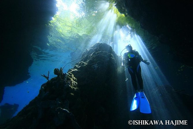 Tawali Diving Package photo 1