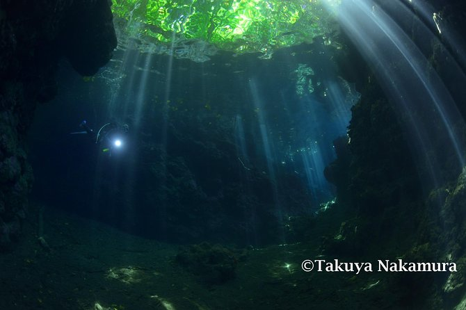 Tawali Diving Package photo 13