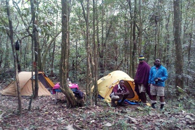Uluguru Trekking Tour 4 days 3 Nights