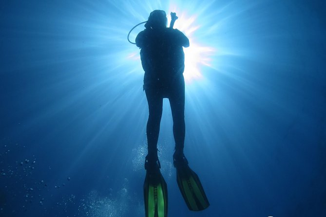 Discover Scuba Dive in Gran Canaria photo 3