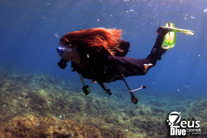 Discover Scuba Dive in Gran Canaria photo 4