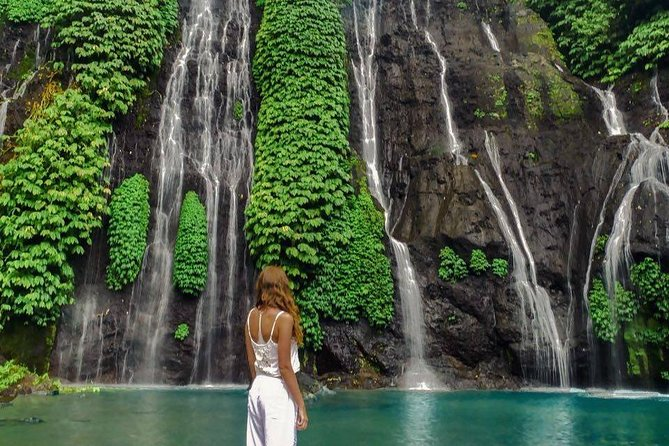 Visit the Best Waterfall In Bali
