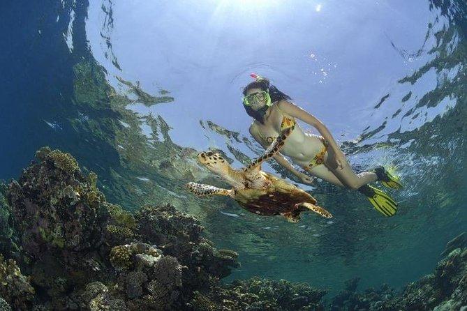 Dahab Safari & Snorkeling at Blue Hole