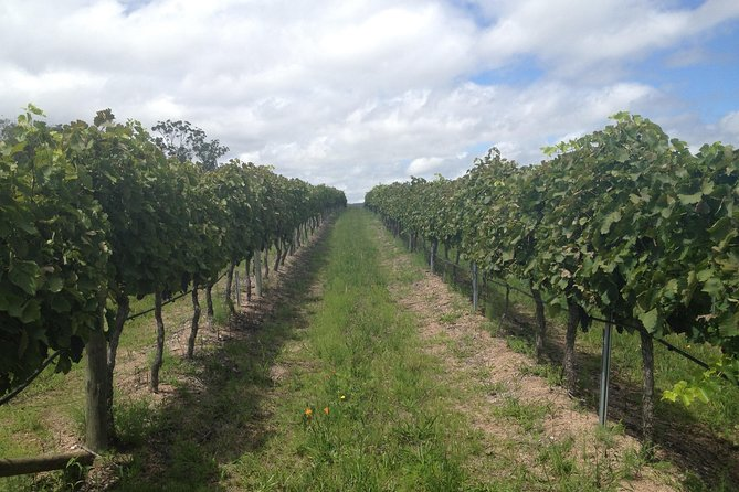 Coal River Valley & Hobart food & wine grazing tour