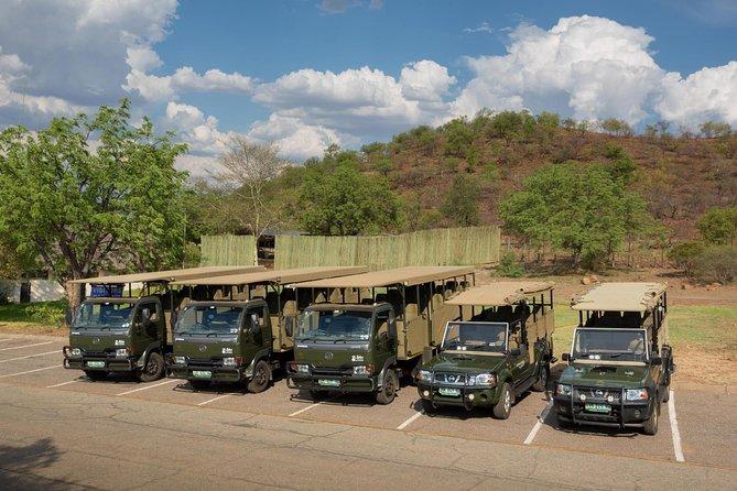 3 Days Pilanesberg Park Safari - Chalet Accommodation