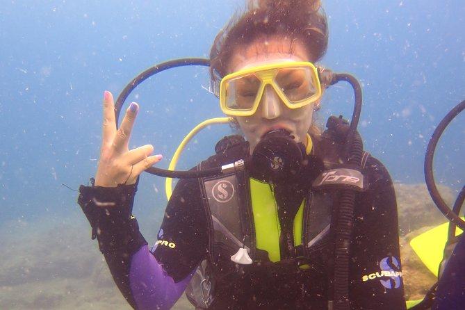 Side: Scuba Diving Under Water Museum