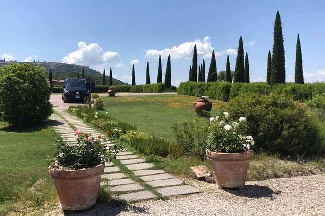 Siena, San Gimignano & the Chiantiside private tour with Mercedes V class Van