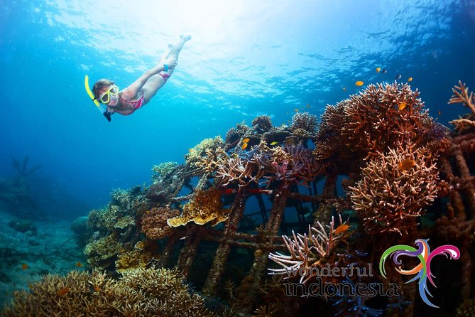 Have fun one day in Nusa Penida: snorkeling, seawalker and Lembongan tour