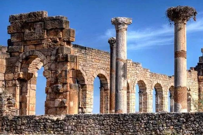 From Fes to Volubilis and transfer to tangier (Port or Aiport or Hotel)