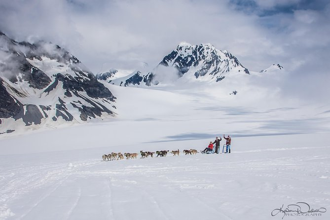 Helicopter and Glacier Dog Sledding Tour from Seward
