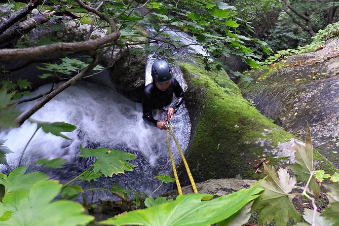 Serpent's Tail Half Day Canyoning Tour (Gapyeong, close to Seoul)