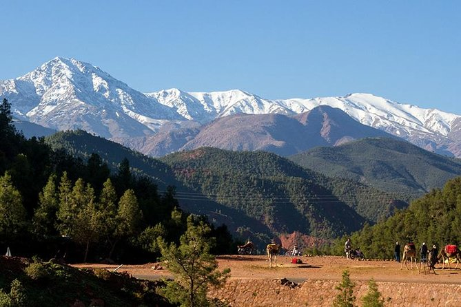 High Atlas Mountains & 4 Valleys Day Trip from Marrakech photo 4