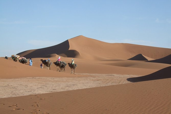 Morocco travel and camel trek Marrakech to M'hamid for 8 days South Morocco