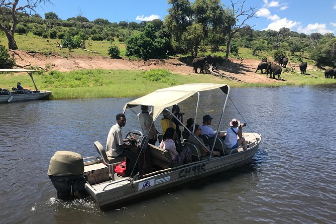 Overnight Camping Safari in the Chobe National Park from Victoria Falls
