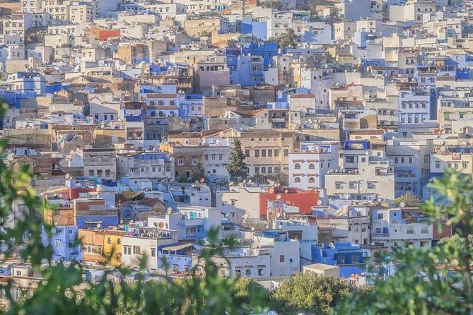 Full Day Trip to Chefchaouen and Tangier photo 12