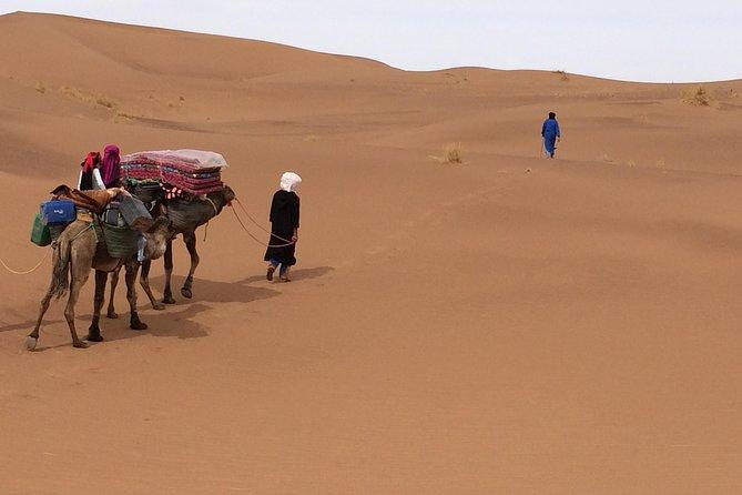 Camel Trekking the 'Gateway to the Desert'