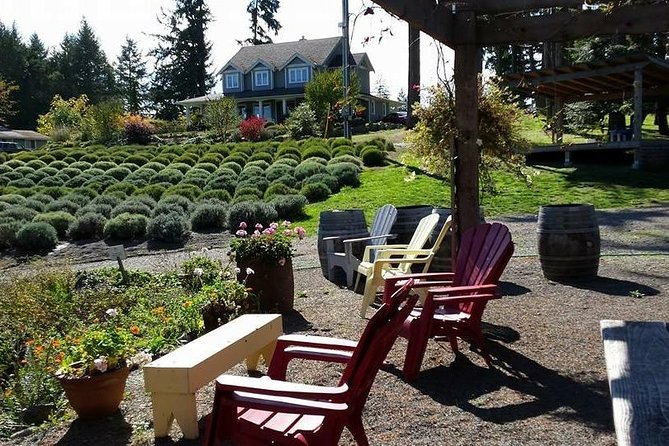Cowichan Wine Tour with picnic and side tour to Cowichan Bay photo 8