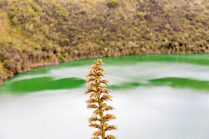 La Leyenda del Dorado, Guatavita lake, farm and Town all included