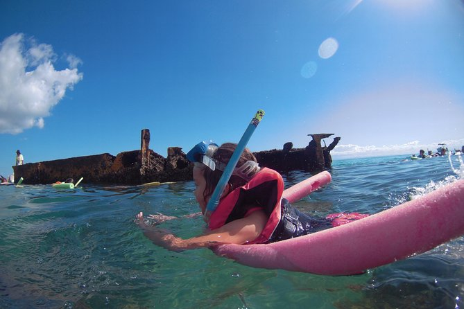 No Extra Cost! Gold Coast Dolphin Watching Cruise & Tangalooma Wrecks Snorkeling photo 3