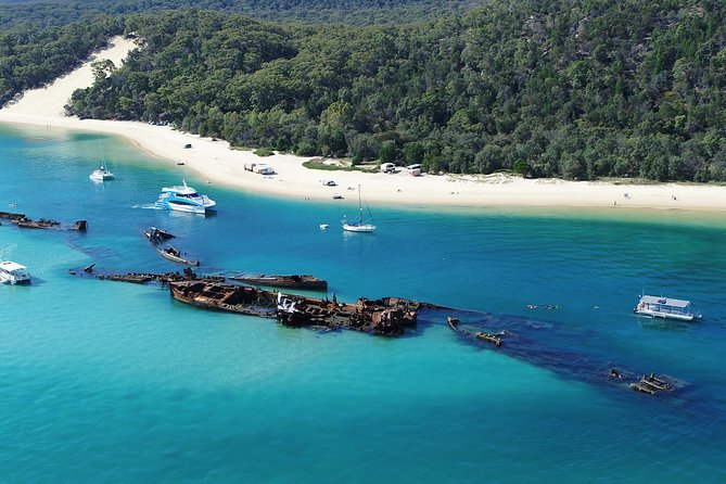 No Extra Cost! Gold Coast Dolphin Watching Cruise & Tangalooma Wrecks Snorkeling photo 4