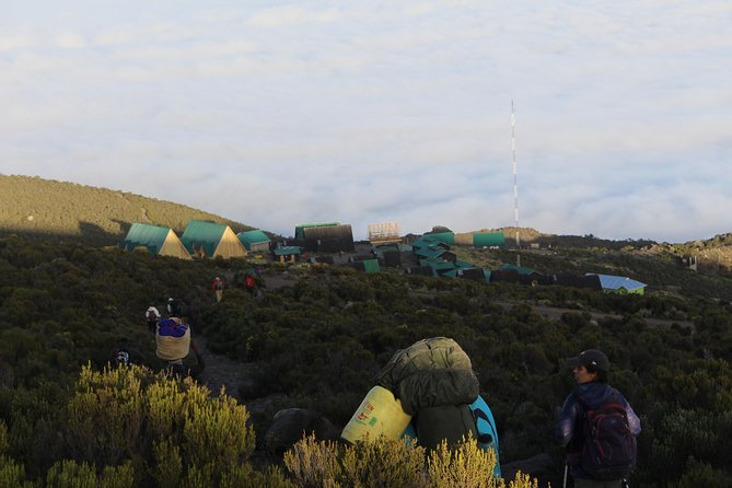 Kilimanjaro Marangu Route 5 Days photo 10