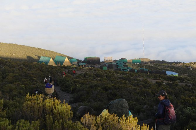 Kilimanjaro Marangu Route 5 Days photo 4