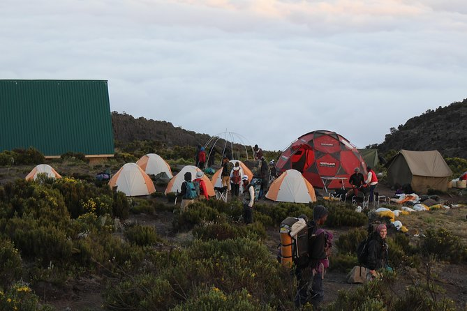 Kilimanjaro Marangu Route 5 Days photo 11