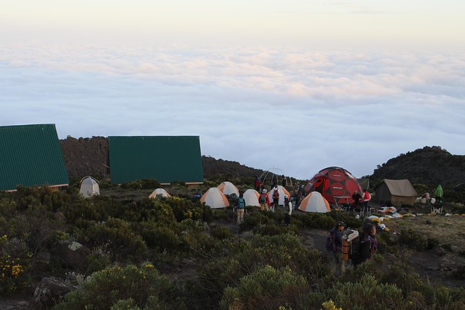 Kilimanjaro Marangu Route 5 Days photo 9