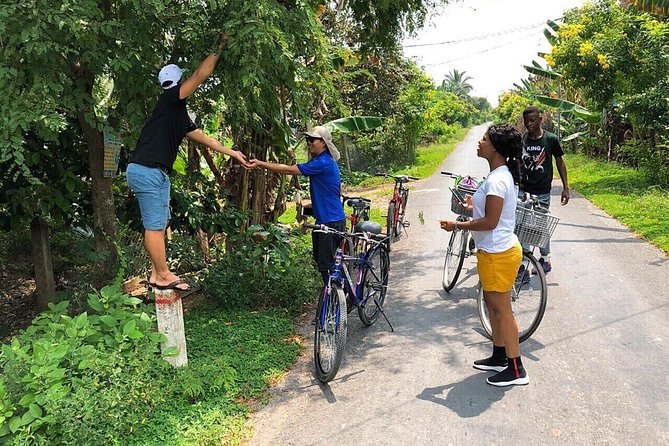 Non-Touristy Mekong Delta with Biking in Ben Tre Private Tour photo 1