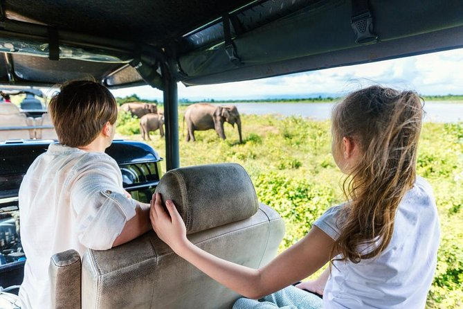 Half-Day at Udawalawe National Park ex-Galle | Jeep Safari Included photo 7