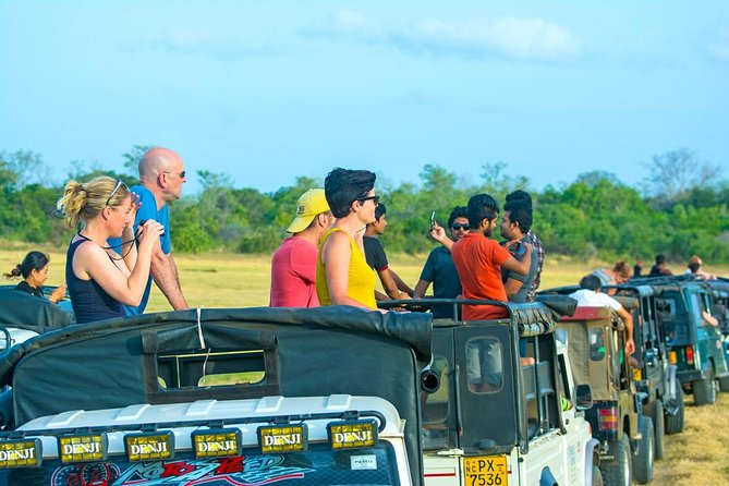 Half-Day at Udawalawe National Park ex-Galle | Jeep Safari Included photo 3