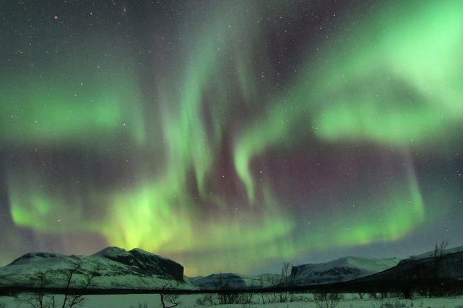 Flavours from the Sápmi lifestyle - Northern lights experience