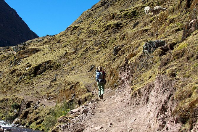 Lares Trek - 4 days