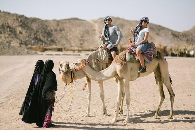 Trip To Kharga And Dakhla Oasis From Luxor photo 4