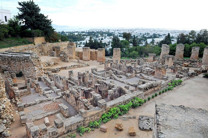 Tunis, Sidi Bousaid and Carthage Day Trip from Monastir