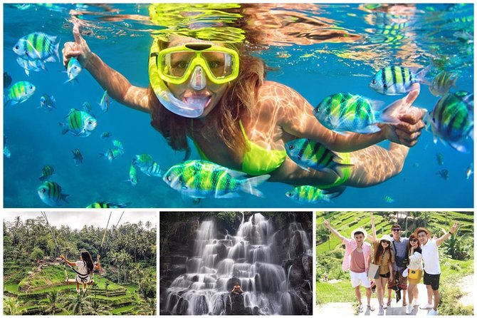 Blue Lagoon Snorkeling and Lunch - Jungle Swing - Kanto Lampo with Rice Terrace