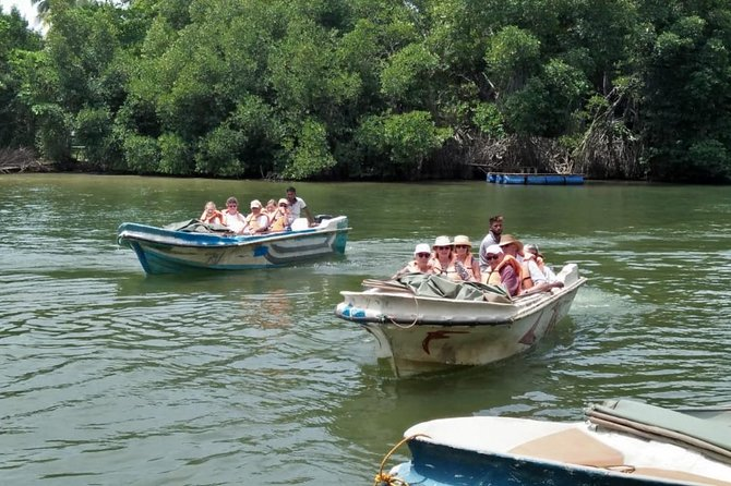 Southern Sri Lanka- Galle Day Excursion : Turtles , Madu River, Galle Fort