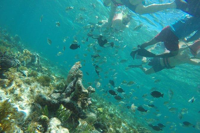"Isla Mujeres Catamaran ""Conquest The Island"""